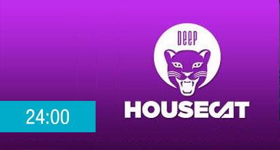 deephousecat